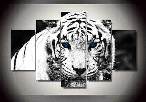Beautiful White Tiger Blue Eyes Canvas