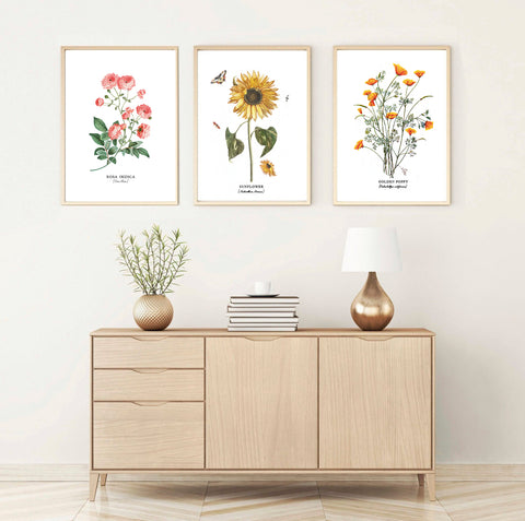Botanical print art, modern print art to decorate, sunflower print art, set of 3 print art to decorate in fall, glacelis, art