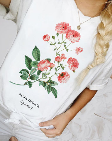 Rosa indica white shirt tee for woman at glacelis for fall shirt for women , winter shirt for women, christmas shirt for women