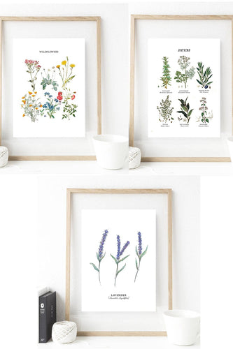 Set of 3 Botanical Print Art - These stunning botanical art prints are the perfect decorative gift for you or your loved one. Any plant fanatics would cherish these one of a kind illustrations as a gift