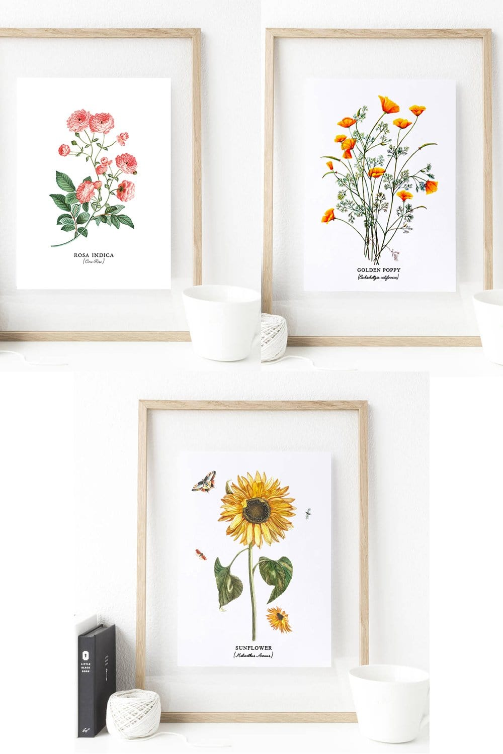 Set of 3 Botanical Sunflower Print Art - Thrill your walls now with this stunning Botanical print art set of sunflower, golden poppy, and rosa indica flowers. Any flower fanatics would cherish these one of a kind illustrations as a gift