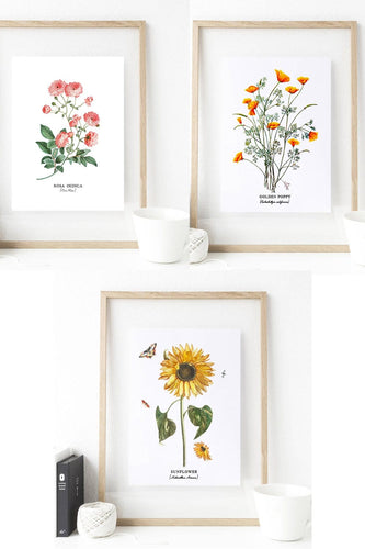 Set of 3 Botanical Sunflower Print Art - Custom Personalized Gifts for friends, Family & special occasions!
