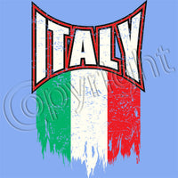 Italy Distressed Flag T Shirt