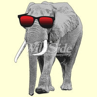 Elephant w/ Sun Glasses T Shirt