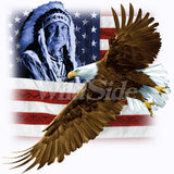 Indian, U.S. Flag & Eagle T Shirt