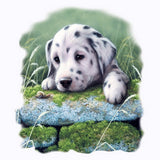 Dalmation Puppy T Shirt