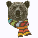 Bear with Scarf T Shirt