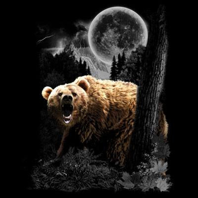 Bear Wilderness  T Shirt