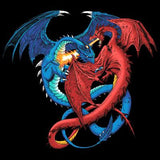 Duel Dragon  T Shirt