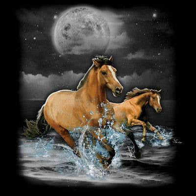 Horse Wilderness  T Shirt