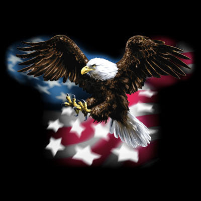 American Eagle w/ Flag T Shirt