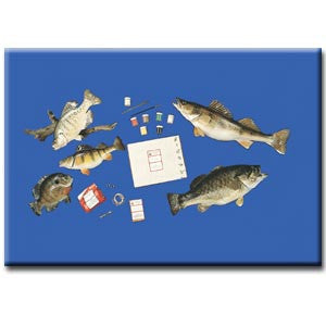 D.I.Y Game Fish Mounting Kit