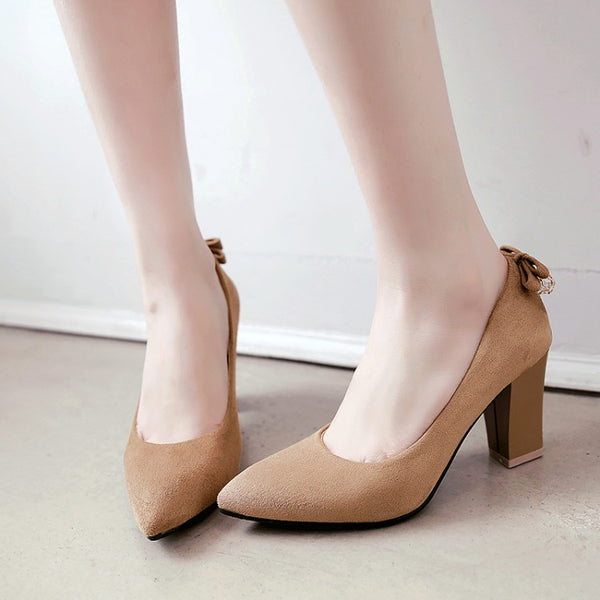 Pointed Toe High Heels Chunky Heel Women Shoes 5599