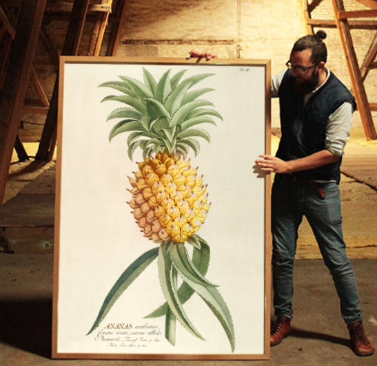 "Poster Print ""PINEAPPLE"""