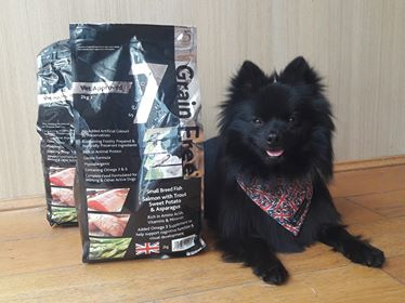 Seven Pet Foods - The benefits of grain free dog food