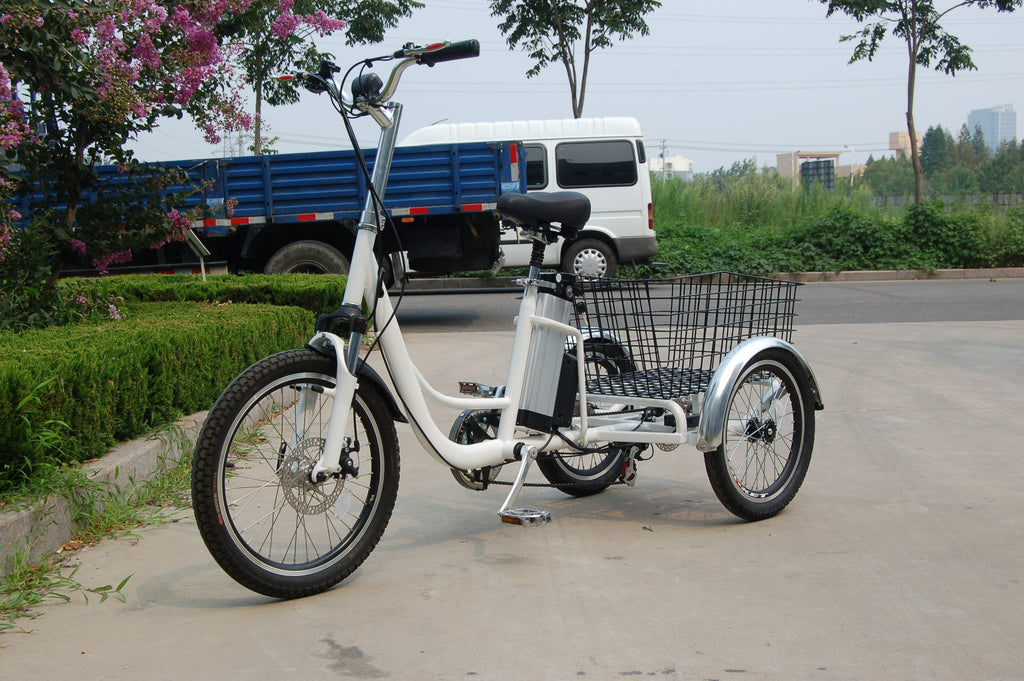 RMB EV Libert-E Electric Tricycle – EBike Catalog