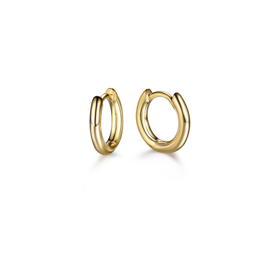 a pair of small, plain gold hoop earrings