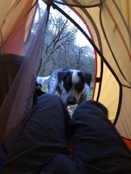 naturehike-cloud-up-1-man-tent-in-use-in-dartmoor-national-park