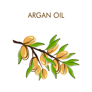 Argan – The Miracle Oil