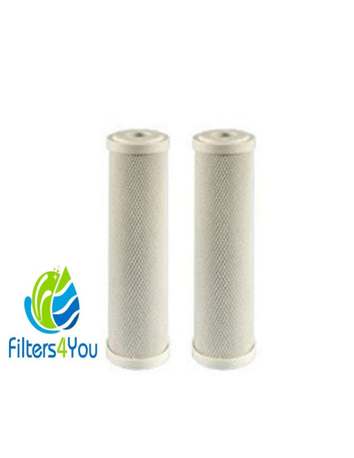 WATTS WATTS-MAXETW-FF20 C-MAX Whole House Replacement Filter ...