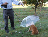 Pet Dog Umbrella Leash - Clear Transparent Folding Puppy Umbrella - Perfect Life Ideas