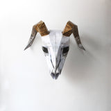 Paper Animal Skull Wall Decor