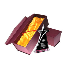 Shooting Star Crystal Trophy CG Medals / Trophies / Plaques One Dollar Only