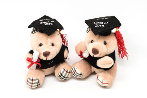 Graduation Bear Soft Toy,  - Novelty/Children's Items - One Dollar Only