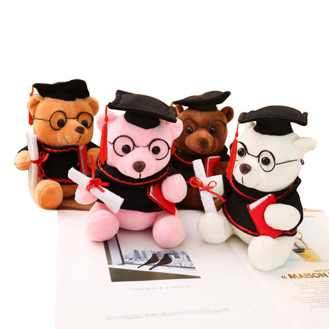 graduation bear in 4 colours