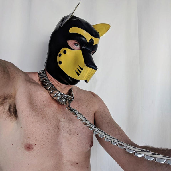 Bling Leash - Geared Up Pup