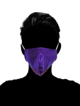 Royal Purple Face Mask - Geared Up Pup