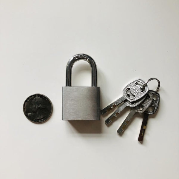 304 Stainless Steel Lock - Geared Up Pup