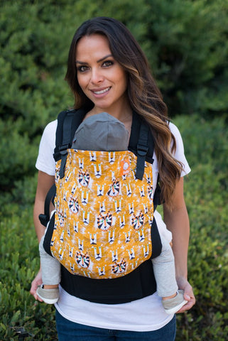Tula Ergonomic Baby Carrier ~ OH MY!