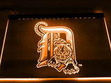 Detroit Tigers LED Neon Sign USB - Orange - TheLedHeroes