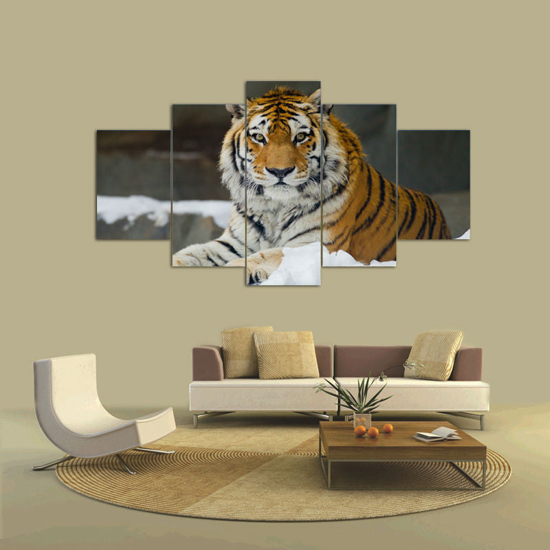 Tiger 5 Pcs Wall Canvas -  - TheLedHeroes