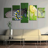 Butterfly on a flower 5 Pcs Wall Canvas -  - TheLedHeroes