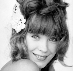 Pamela Des Barres announces new collection for Groupieu.com