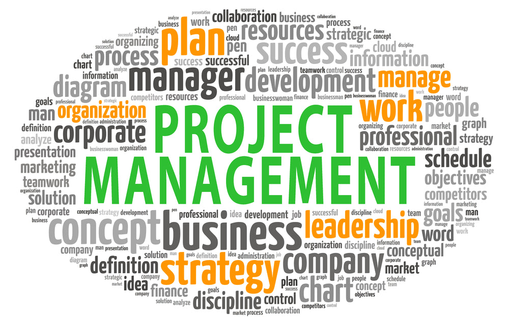 Blog Post #3: Shortcomings of 'Traditional' Project Management