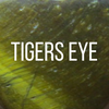 Tigers Eye Icon