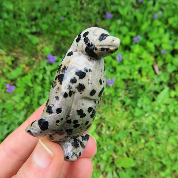 Carved Stone Penguin Figurine - Dalmation Jasper Crystal Animal
