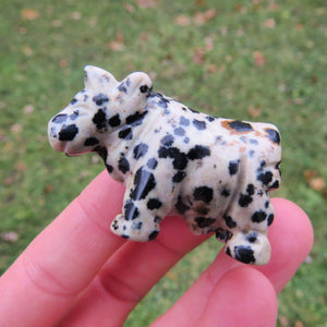 Carved Stone Cow Figurine - Dalmation Jasper Crystal Cow