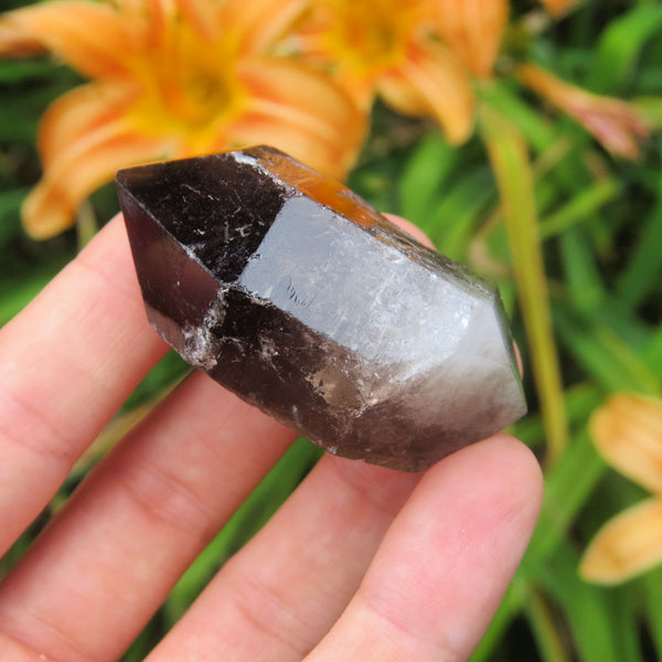 Double Terminated Smoky Quartz Crystal Point 2""