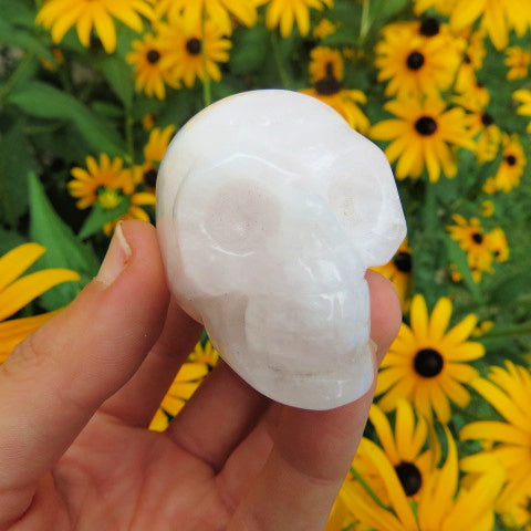 Carved Rose Quartz Crystal Skull - Pink Stone Skull