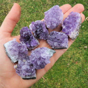 "Small Raw Amethyst Clusters 1"" Purple Stones"