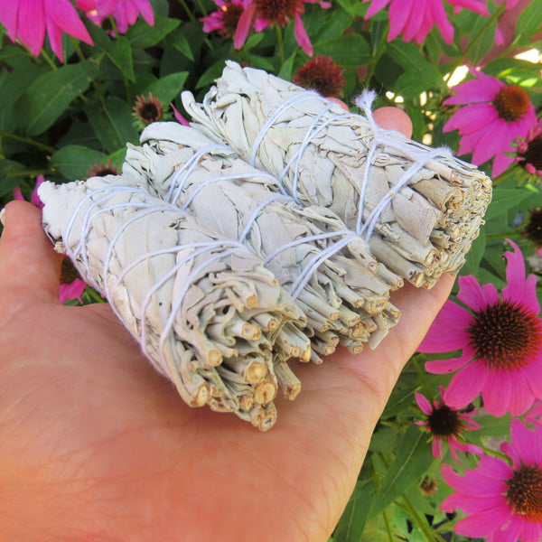 White Sage Smudge Stick 4"