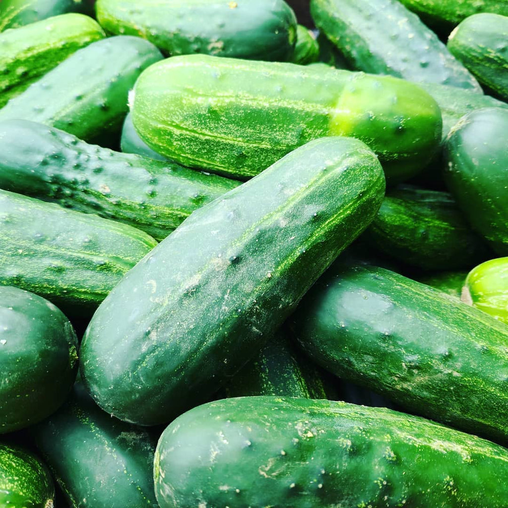 Vegetables: Cucumbers