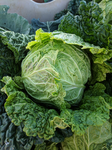 Vegetables: Savoy Cabbage