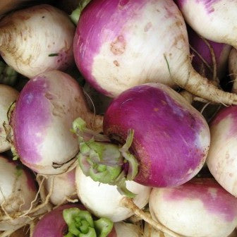 Vegetables: Turnips (Purple Top)