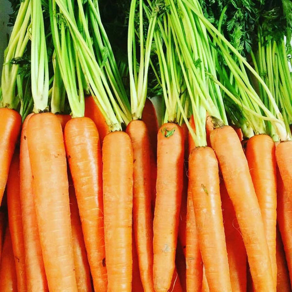 Vegetables: Carrots