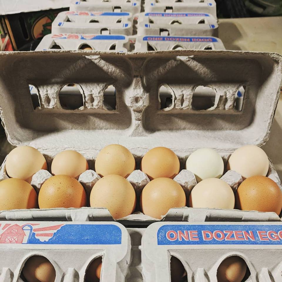Eggs: Pasture Raised Chicken Eggs
